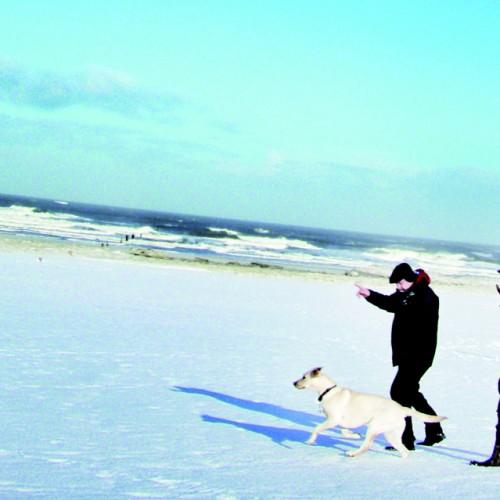 Langeoog im Winter genießen